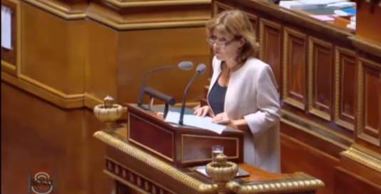 Discussion générale, en 2ème lecture, du Projet de loi sur la Liberté de Création, Architecture et Patrimoine au Sénat.